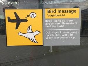 Luchtvaartbeleid