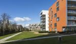 Amsterdam komt ruimte voor woningen tekort. Kan het groeien rondom Schiphol?
