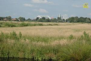 Middelpolder,_Bankrasweg,_1183_Amstelveen,_Netherlands_-_panoramio.jpg