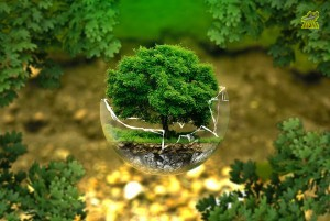 environmental-protection-nature-conservation-ecology-eco.jpg
