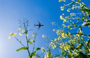luchtvaartnota.jpg